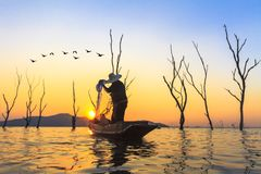 Fisherman hold net prepare catch a fish Royalty Free Stock Images