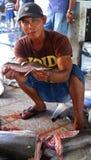 Fisherman holding baby shark in market Royalty Free Stock Photo