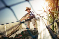 Fisherman holding a big carp Royalty Free Stock Images