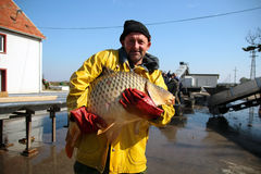 Fisherman Holding a Big Fish. Portrait of fisherman with big carp fish in his hands at fish farm Royalty Free Stock Photography