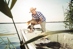 Fisherman Holding a Big Fish Stock Image