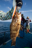 Fisherman holding a grouper on fishing boat in Andaman, Thailand Royalty Free Stock Photos