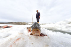 Fisherman and ice Stock Photography