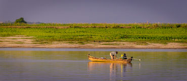 Fisherman Irrawaddy river, Myanmar. Fisherman on Ayeyarwardy river, Myanmar Royalty Free Stock Image