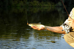 Fisherman just caught a fish Royalty Free Stock Image