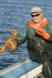 Fisherman and a live lobster Royalty Free Stock Photos