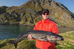 Fisherman Man in glasses holding big fish Cod Royalty Free Stock Photography
