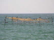 Fisherman nets at sea Royalty Free Stock Images