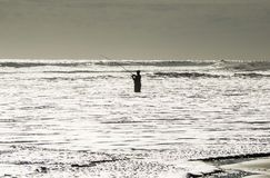 A fisherman in the ocean. This fisherman was alone in the world with his fishing rod and water. The waves were far away. Photo taken on the beach of Daytona Royalty Free Stock Photo
