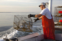 A fisherman out at sea Stock Photography