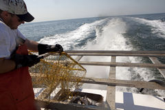 A fisherman out at sea Stock Photo