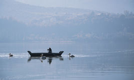 Fisherman and pelicans Royalty Free Stock Photos