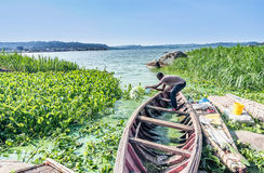 Fisherman poors out water from a  boat  on  Lake Victoria near M Royalty Free Stock Photography
