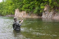 Fisherman pulls caught salmon Royalty Free Stock Image