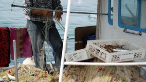 Fisherman pulls out a fish catch from fishing nets. Elderly sailor in the port of Bodrum, Turkey stock video