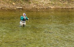 Fisherman Releasing a Trout Back into the Roanoke River, Virginia, USA Stock Photography