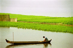Fisherman on river in boat. Fisherman in long wooden boat on river with green fields in background royalty free stock images