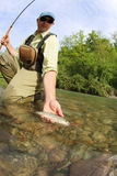 Fisherman in river catching trout Stock Image