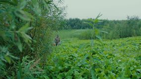 Fisherman on the road. The fisherman came out from behind the bushes on the path leading to the bank of the river stock footage