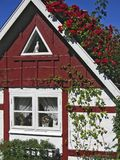 Fisherman's cottage with red roses Stock Photography