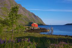 Fisherman's house. Fisherman's cottage with jetty on Lofoten Islands, Norway Royalty Free Stock Photo