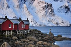 Fisherman's Village On The Lofoten, Norway Stock Photography