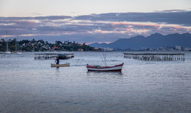 Fisherman at Santo Antonio de Lisboa Beach - Florianopolis, Santa Catarina, Brazil