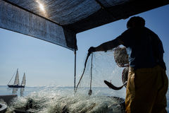 Fisherman at sea. A fisherman on a fishing boat deck checking nets for lobsters and other captures during capture season on early summer before beeing sent to Royalty Free Stock Photo
