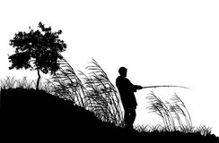 Fisherman silhouette in reed Royalty Free Stock Photos