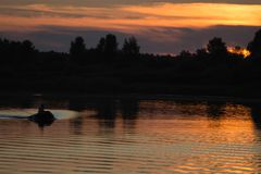 Fisherman silhouette at sunset. Royalty Free Stock Photo