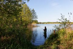 Fisherman. Standing in the lake and catching the fish during sunny day Stock Images
