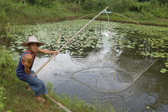 Fisherman with stave, Asia Royalty Free Stock Photo