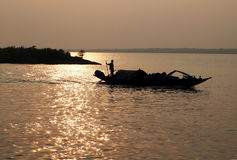 Fisherman in the Sundarbans, India. Looking for catch between the mangrove islands in West Bengal Stock Photography