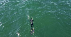 A fisherman swiming with an harpon stock video footage
