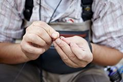 Fisherman threading a small fly onto his line royalty free stock image