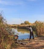 Fisherman throw fresh fish bait Stock Photography