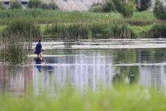 Fisherman. Trying to catch fish in the summer Royalty Free Stock Images