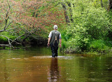 Fisherman Walking Downstreams Stock Image