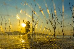 Fisherman on a wooden boat with sunset background. Picture show a fisherman swing net catch a fish in the lake on vintage wooden boat with sunset and mountain Royalty Free Stock Photo