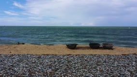 Fishermans在海滩的tripartity浪漫史斯里兰卡 库存图片