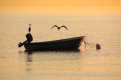 Fishermans Boat in Dawn with Herons. Fishermans Boat in Dawn with two Herons Herons; warm Light Royalty Free Stock Photo
