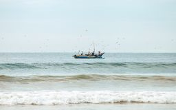 Fishermans on the boat in the sea with seagulls above them. Weligama, Sri Lanka. stock photography