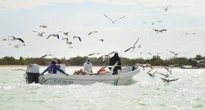 Fishermans dans Celestun photo libre de droits