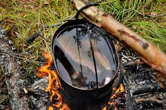 Fishermans ear from fresh fish. Bonfire, bowler hat, fishing, rest. Closeup. Fishing in the forest stock photography