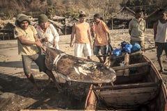 Fishermans.(Lamalera,Indonesia). Fishermen from the fishing village Lamalera unload the fish caught.The village of Lamalera on the Indonesian island of Lembata stock photo