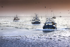 Fishermans. Tired fishing fleet getting back, France near the Atlantic ocean Stock Photography