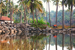 Fishermans village. In palm tree forest near the lake in Varkala, Kerala, India Royalty Free Stock Photos