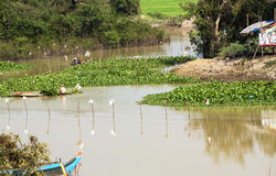 Fishermen in Asia. In the river near cambodian village Stock Photography