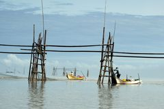 Fishermen in Bako. Fishermen setting up nets across the river in Bako, Sarawak, Malaysia Stock Image