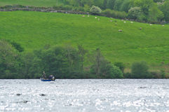 Fishermen on a boat on a lake in Ireland. Fishermen on a boat on a lake among green hills in Ireland stock photography